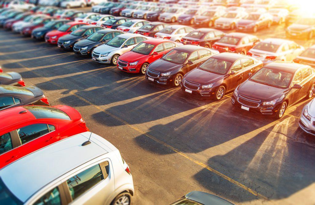 Jak zabezpieczyć parking przed ptakami?
